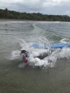 Learn how to surf in Costa Rica