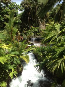 Waterfall at Tabacon Grand Spa Thermal Resort